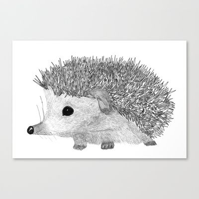 BABY HEDGEHOG Stretched Canvas by StudioSotron - $85.00