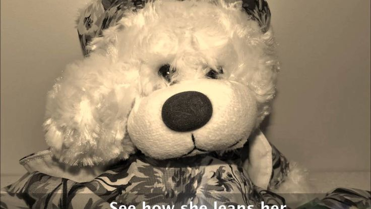 "Bear Hugs Studio presents ""Shakesbear"" #shakespeare #teddybears"
