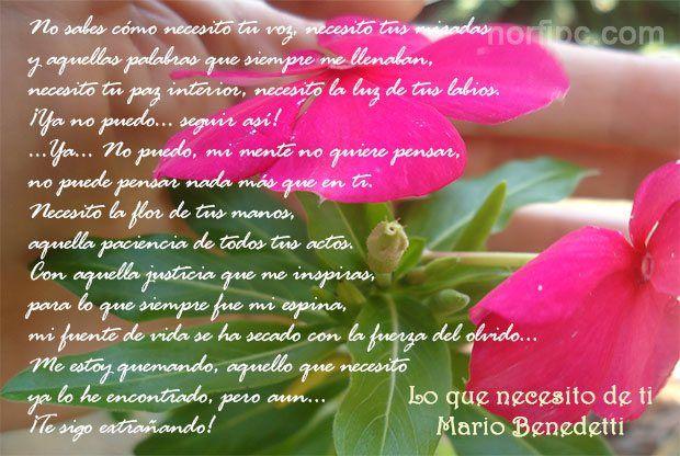 Poema de Mario Benedetti, Lo que necesito de ti