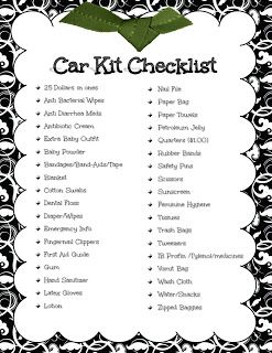 Car Kit Checklist: fit most of the supplies in one of those plastic shoe containers.