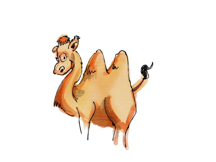 Fiche d'activité : les chameaux doivent réussir à ramener toutes les gourdes d'eau dans leur zone de départ sans se faire piquer (toucher) par les maringouins #gardescolaire #eau #jeu #eleves