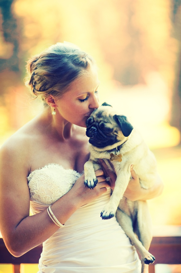 wedding dress, kisses, pug, what's not to love?