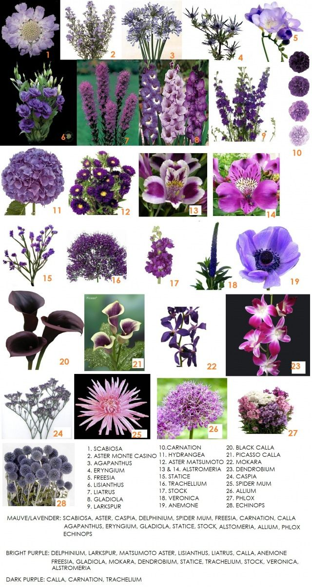 The Dark Purple Cali Lillys At Bottom For Ones I Hold His Butenier And Some Select Places Ar Country Wedding Ideas Me My Fiance In