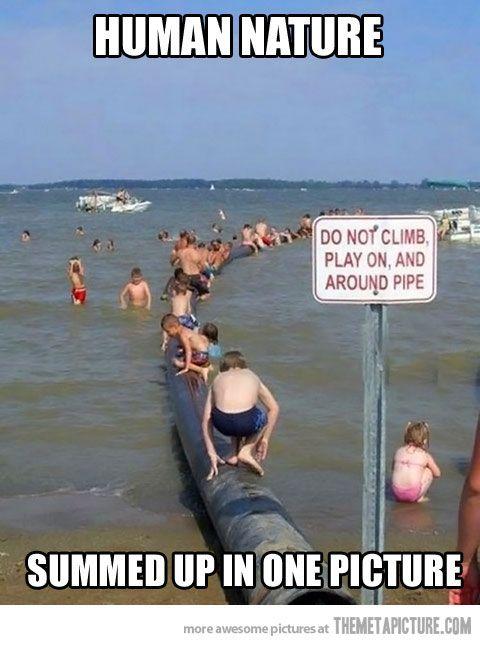 Do Not Climb...