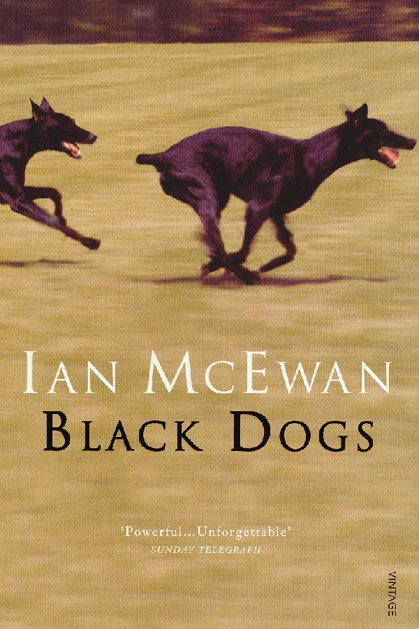 ian mcewan atonement themes Mcewan - ian mcewan born in 1948 in aldershot, england received a ba degree in english literatu atonement - ian mcewan 暂无评价 92页 2下载券 'ian mcewan's the.
