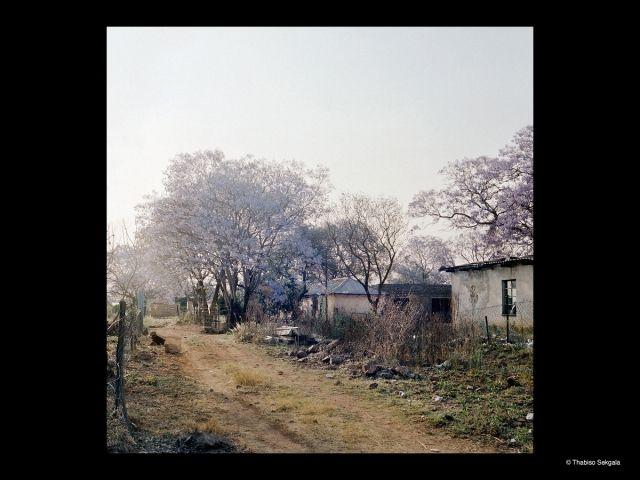 Thabiso Sekgala, né en 1981 à Soweto, étudie aujourd'hui à Berlin. Pour cette série, il est retourné dans une zone rurale créée par le régim...