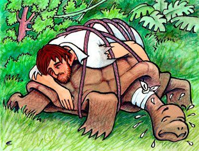 eufepru: La tortuga gigante