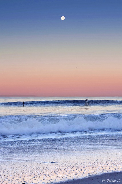 Moonlight Surfer. By Didenze.