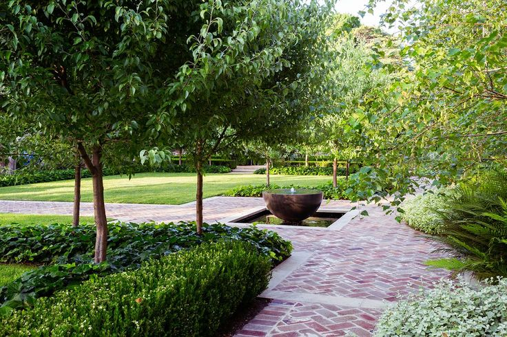 Pleached snow pear trees (*Pyrus nivalis*) underplanted with large-leaf ivy (*Hedera felix*) frame the front entry pathway and water feature.