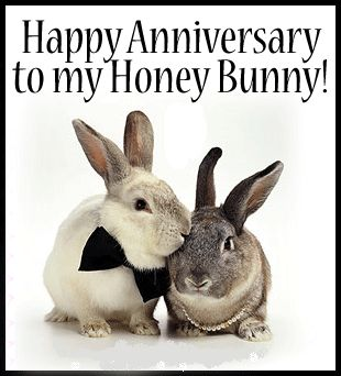Happy 15 Anniversary Honey Bunny