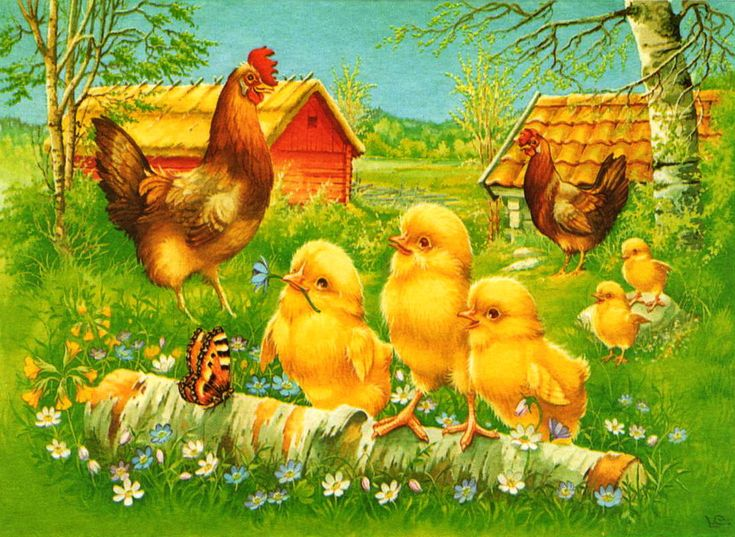 Извини пожалуйста, картинки курица с цыплятами нарисованные