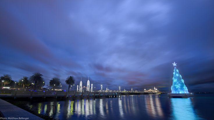 Photo: Matthew Bellenger - Geelong Waterfront Christmas Tree