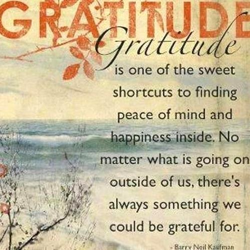 gratitude how to constantly maintain this attitude ... With all the obstacles you tend to get negative.