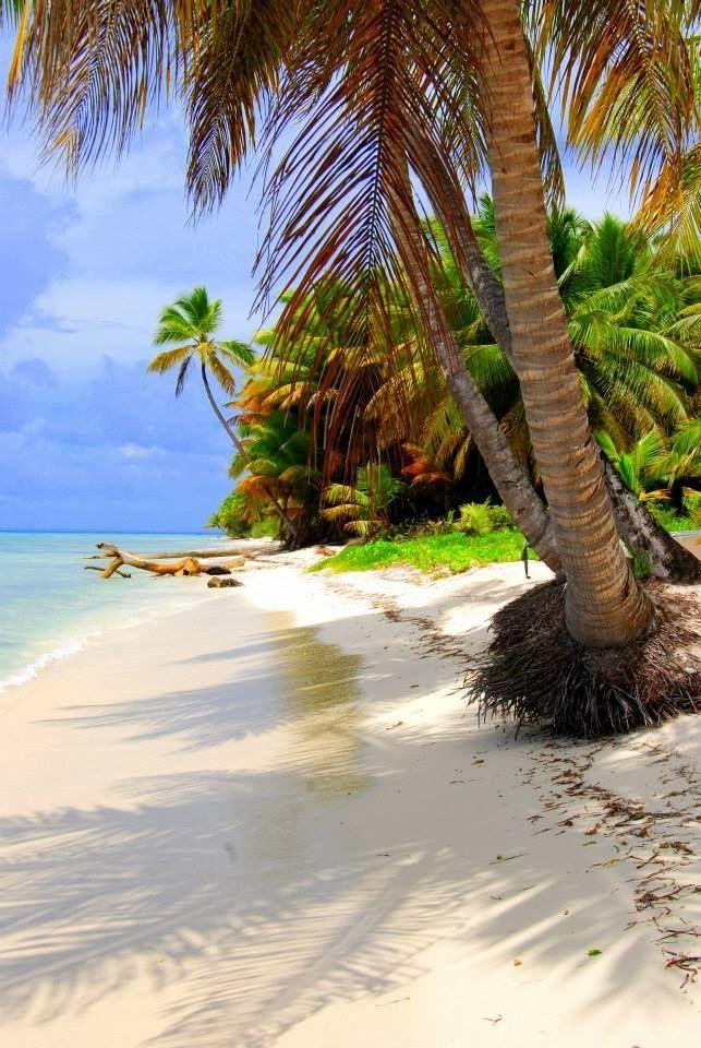 Isla Saona, Caribe.