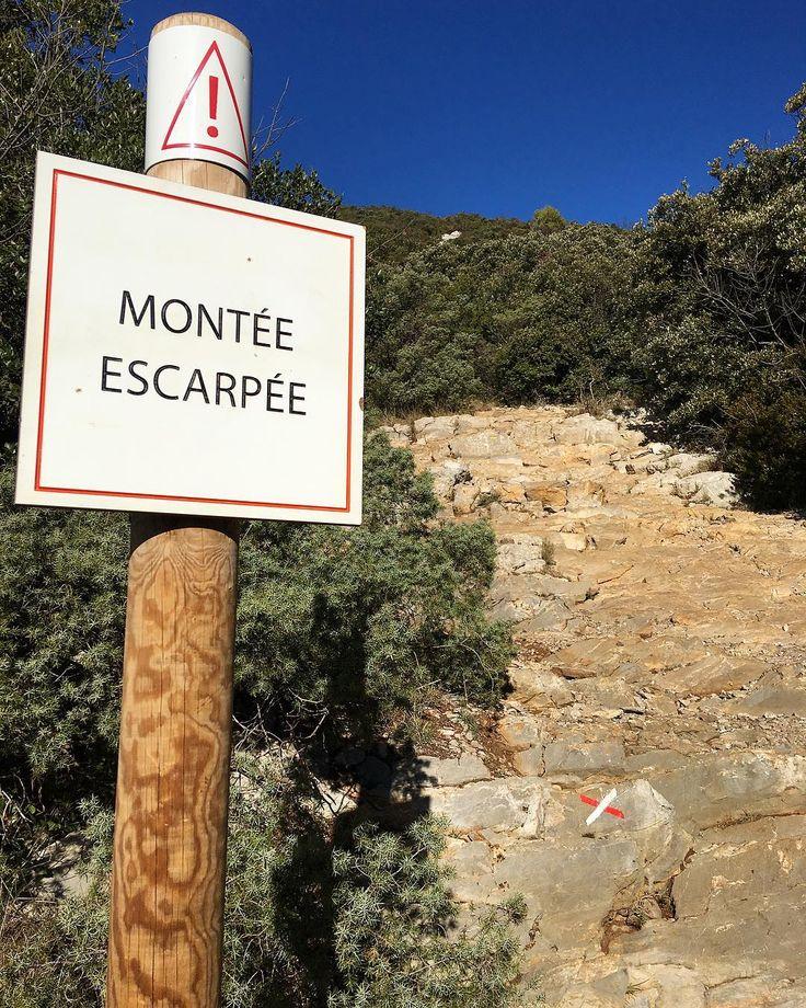 On s'est fait quelques frayeurs et des petites glissades... Pense à mettre de bonnes chaussures !  Pic Saint Loup (34)  Tout sur #PintadePicSaintLoup  __________________  #masdefrance #masdebaumes #chambredhotes #picsaintloup #travel #blogtravel #travelgram #bloggertravel #voyage #trip #Montpellier #pintademontpellier #occitanie #roadtrip #oenologie #wine #gastronomie #randonnee