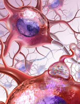 This advertising illustration depicts a neuron or nerve cell and features a detailed look at a single synapse.