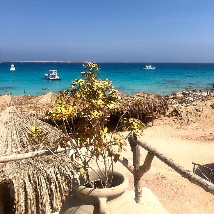 Bring mich zurück ins Paradies 🌴 #mahmya #paradise #egypt #paradisebeach #beach    – Summer