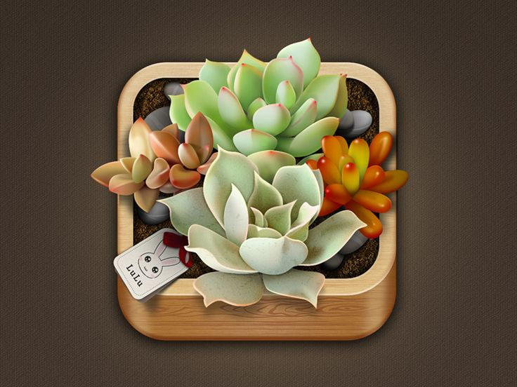Very creative representation of the succulent plants. This visial is given almost replicating a scene that you would see these plants in. The low dish and pastel colors are very traditional to these plants. The tag is also a minor detail that shows the designer paid close attention to their work!