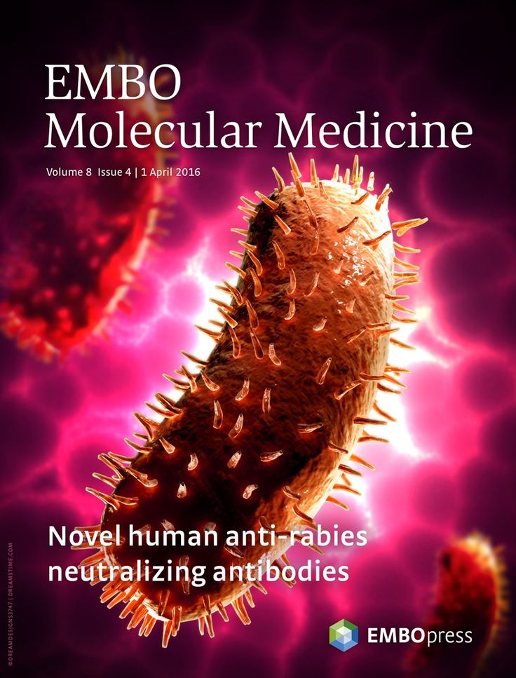 About the Cover — April 01, 2016, 8 (4) | EMBO Molecular Medicine