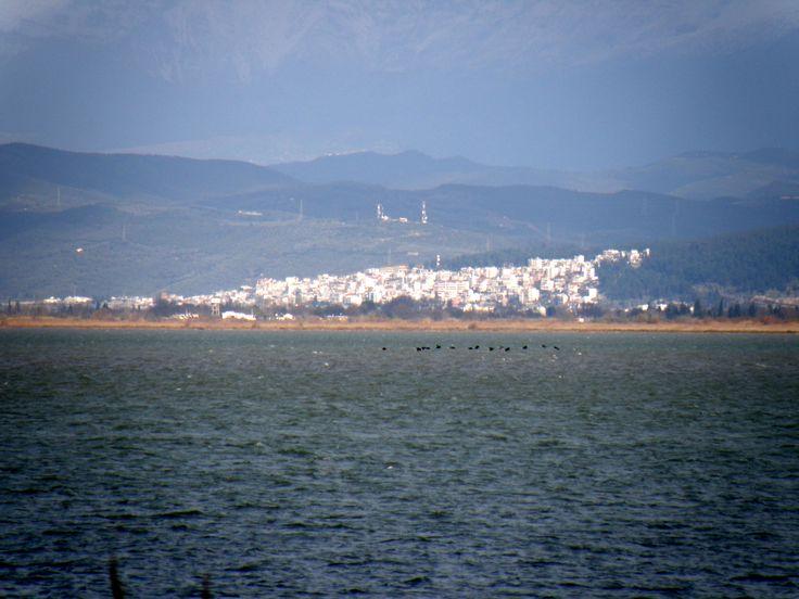 Amvrakikos gulf – Αμβρακικός κόλπος, στο βάθος η Άρτα