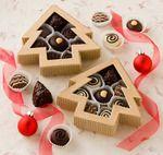 Organic & Fair Trade Chocolate by Mama Ganache Artisan Chocolates