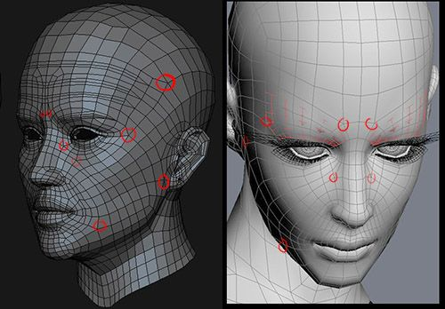 Realistic Human Face Modelling Essay by Phung Dinh Dzung