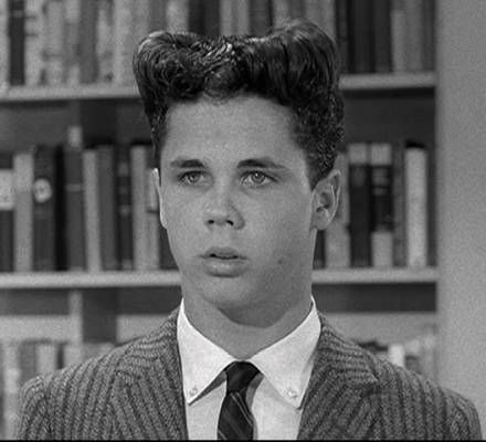 tony dow leave it to beaver