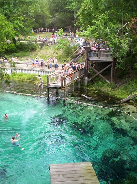 Lafayette Blue Springs State Park, FL. Float down a natural lazy river on a tube and swim with hundreds of friendly Manatees!
