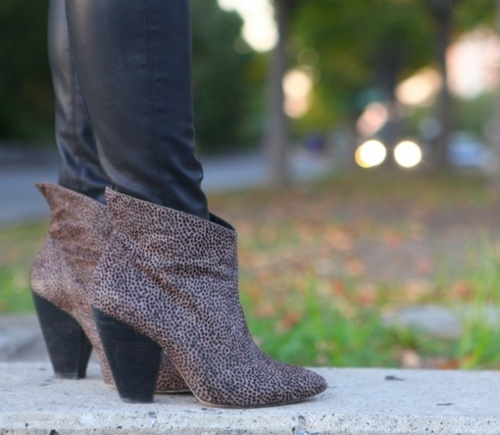 Belle by Sigerson Morrison booties.