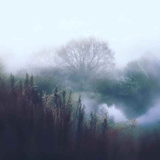 Magical mist, crisp and cold ....