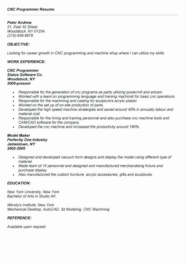 Entry Level Programmer Resume Awesome 11 12 Entry Level Sas Programmer Resume Cnc Programmer Resume First Job Resume