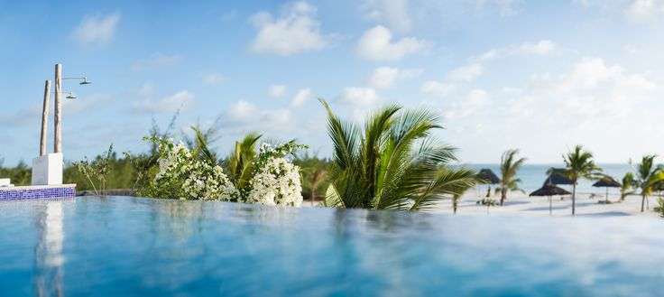 White Bougainvillea down the infinity pool
