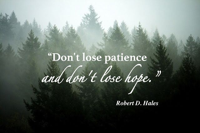 """""""Above all, don't lose patience and don't give up!"""" From #ElderHales' http://pinterest.com/pin/24066179230743960 inspiring #LDSconf http://facebook.com/223271487682878 message http://lds.org/general-conference/2016/10/come-follow-me-by-practicing-christian-love-and-service #LivingProphets"""