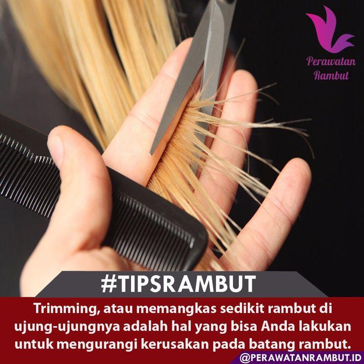 Menurut Aroona Reejhsinghani dalam bukunya, Be Beautiful, Slim and Trim, trimming rambut secara teratur akan membantu mencegah terjadinya ujung bercabang. Coba lakukan trimming setiap 6-8 minggu jika rambut Anda sangat kering atau rusak. #masalahrambut  #tipsrambutrontok  #kecantikanwanita  #tipsrambutsehat  #tipsrambut