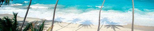 (Princess Cruises) Southern Caribbean Cruises