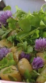 Nurmikolla ja kukkapenkeissä kasvaa paljon maukkaita rikkaruohoja. Strömsön kesäinen perunasalaatti maustetaan nuorilla siankärsämön lehdillä.