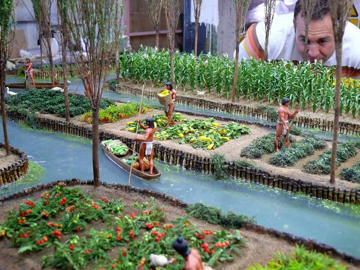 19 best Chinampas images on Pinterest | Aquaponics ...