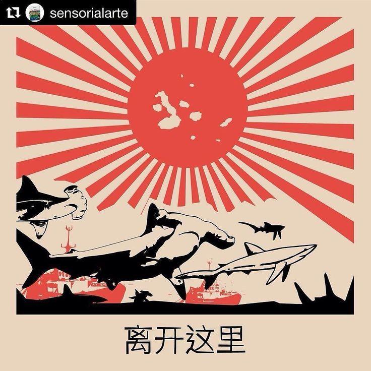 #Repost @sensorialarte (@get_repost)  FUERA DE AQUÍ! GO AWAY!  Rechazamos toda actividad pesquera China en Galápagos.  Arte: @ichiboch Andrés Plascencia.  #galapagosvive #ichiboch #caregalapagos  #nopescacomercial  #art #arte #sensorialarte #goaway #shark #live #oceans #nature