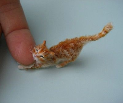 OOAK+Stretching+Ginger+Kitten+Young+Cat+Realistic+by+OREON+doll+house+scale+1:12