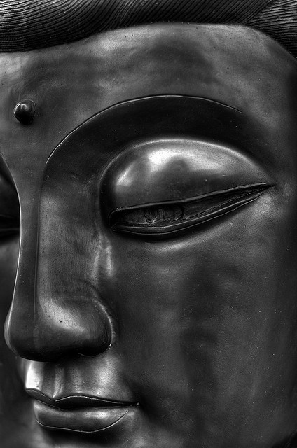 """""""From the Buddhist perspective, the only lasting way to bring about change is for people themselves to change.""""    ~ Pat Allwright  By: Josh Taylor Title: Serenity"""