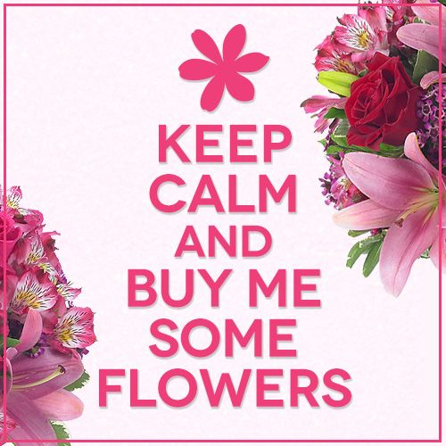 Quotes About Bouquets Of Flowers: 31 Best Funny Quotes, Memes, & Facts Images On Pinterest