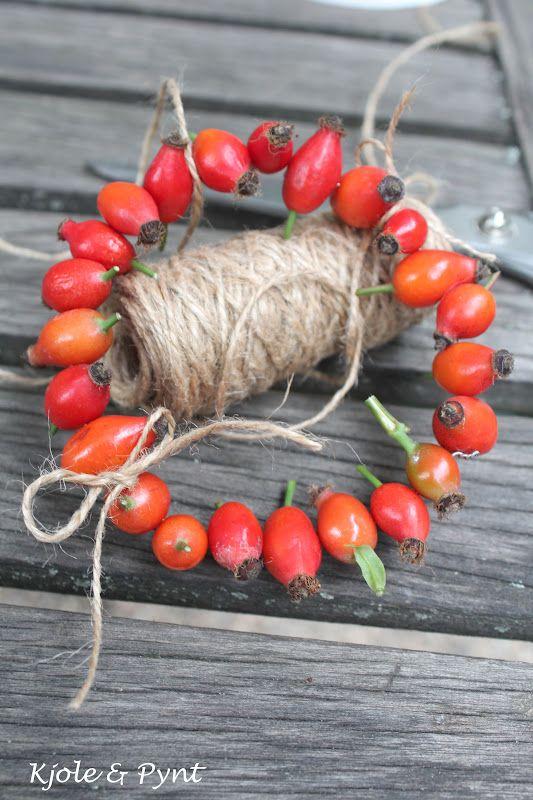 seidenfeins Blog vom schönen Landleben: Hagebuttenkränzchen & Mini DIY…