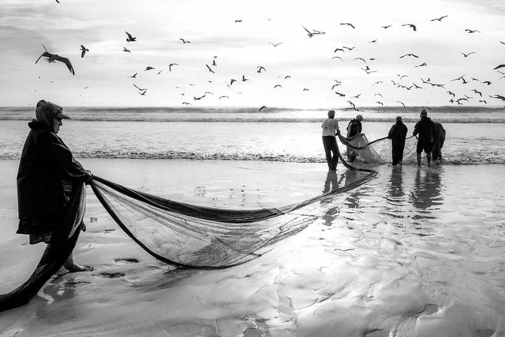 FENCING FISHING