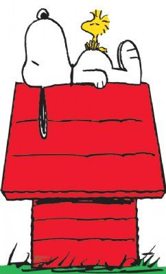 This is how me and Cooper sleep.  I'm Snoopy and he's Woodstock.  Of course, we sleep on a bed and not a doghouse.