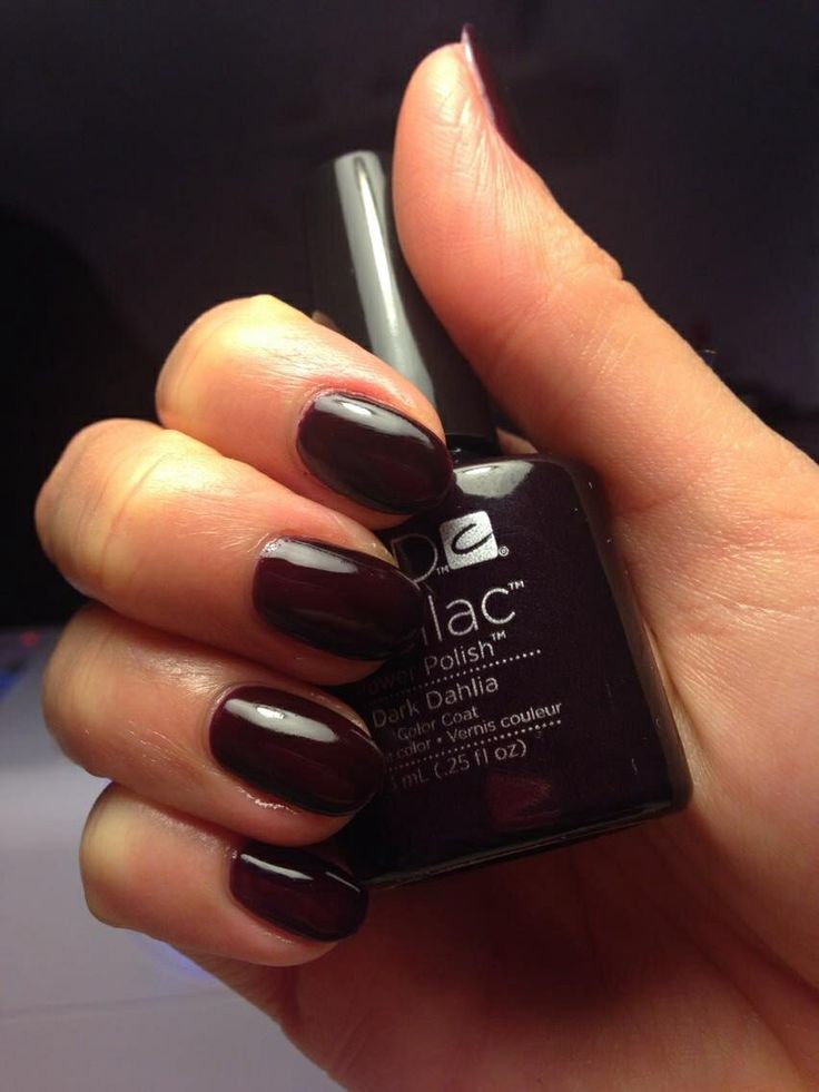 Shellac Dark Dahlia Nails
