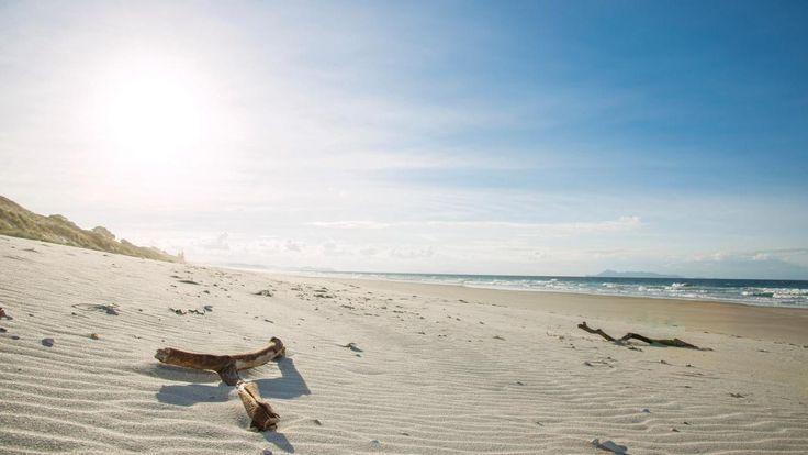 Stunning Pakiri Beach, Rodney
