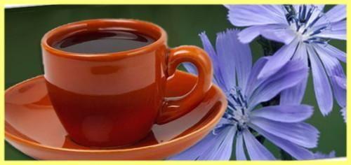 Цикорий - польза и вред. Цикорий как заменитель кофе  Вред или польза? Цикорий - так называют напиток, приготавливаемый из корня растения с тем же названием. Многие, взвесив пользу и вред кофе, решают отказаться от кофе и ищут ему замену. Такой заменой часто становится цикорий. Давайте разберемся, в чем польза и вред цикория. Эта информация поможет получить от цикория максимум пользы и избежать возможного вреда для здоровья.  1. Польза цикория как заменителя кофе.  Одно то, что цикорий…