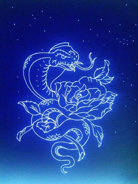 Ideas from the night sky
