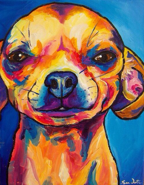 Bold style that accurately reflects the bold personality of many Chihuahuas.