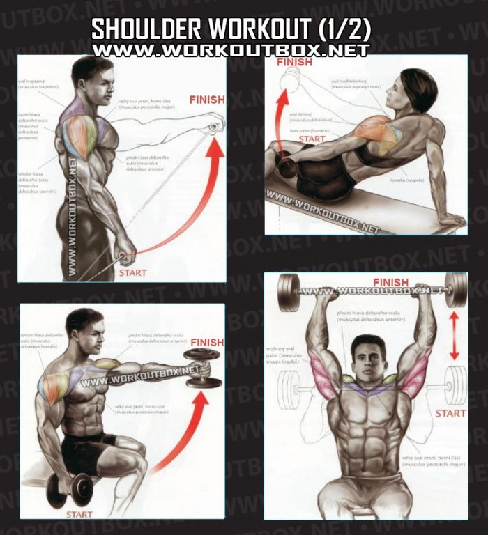 Shoulder Workout Part 1 - Healthy Fitness Exercises Gym Back - Yeah We Train !